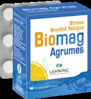 Lehning Biomag Comprimés à Croquer Agrumes B/90 à VERNON