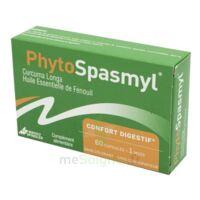 Phytospasmyl Caps B/60 à VERNON