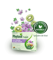 PHYTOXIL TRANSIT Comprimés B/20 à VERNON