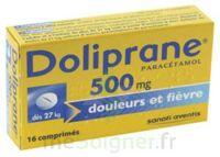 Doliprane 500 Mg Comprimés 2plq/8 (16) à VERNON