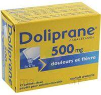 DOLIPRANE 500 mg Poudre pour solution buvable en sachet-dose B/12 à VERNON