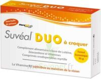 SUVEAL DUO A CROQUER, bt 90 à VERNON