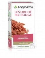 Arkogélules Levure de riz rouge Gélules Fl/45 à VERNON