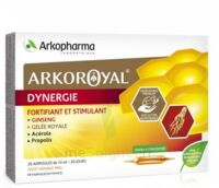 Arkoroyal Dynergie Ginseng Gelée Royale Propolis Solution Buvable 20 Ampoules/10ml à VERNON