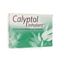 CALYPTOL INHALANT, émulsion pour inhalation par fumigation à VERNON