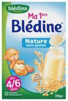 Blédine Ma 1ère blédine nature 250g à VERNON