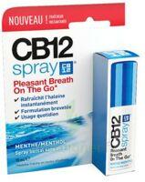 CB 12 Spray haleine fraîche 15ml à VERNON