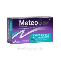 METEOGAZ Poudre orodispersible 10 Sticks à VERNON