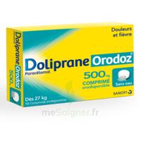 Dolipraneorodoz 500 Mg, Comprimé Orodispersible à VERNON