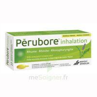 PERUBORE Caps inhalation par vapeur inhalation Plq/15 à VERNON