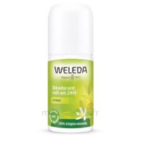 Weleda Déodorant Roll-on 24h Citrus 50ml à VERNON