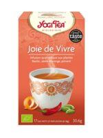 Yogi Tea Joie De Vivre à VERNON
