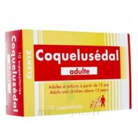COQUELUSEDAL ADULTES, suppositoire à VERNON