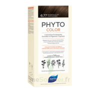 Phytocolor Kit coloration permanente 6.77 Marron clair cappuccino à VERNON