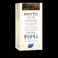 Phytocolor Kit coloration permanente 6.3 Blond foncé doré à VERNON