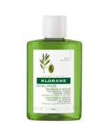 Klorane Capillaire Shampooing Extrait Essentiel Olivier 25ml à VERNON