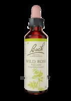 Fleurs De Bach® Original Wild Rose - 20 Ml à VERNON
