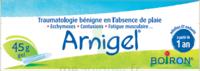 Boiron Arnigel Gel T/45g à VERNON